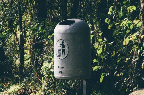 afvalbak in bos
