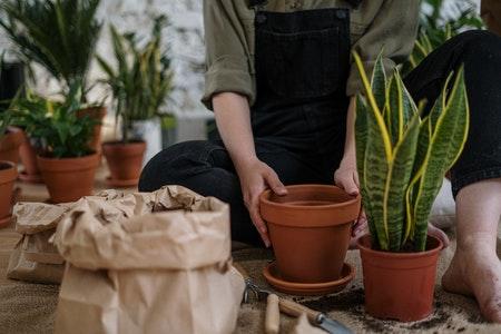 tuin-zomerklaar-maken