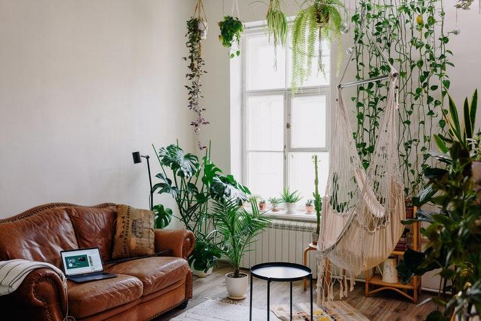 woonkamer en planten