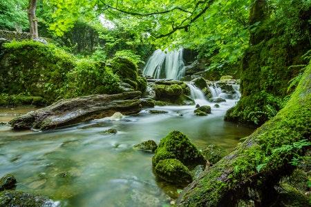 rivier in de natuur met waterval